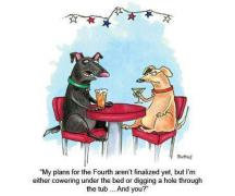 """Comic of two dogs talking. Comic Reads """"My plans for the forth aren't finalized yet but I'm either cowering under the bed or digging a hole through the tub...and you?"""""""