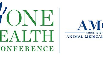 amc one health conference