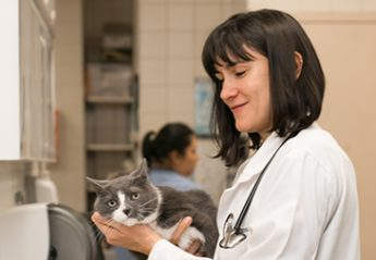 A veterinarian holds a cat