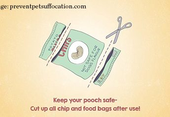 Keep your pooch safe -- cut up all chip and food bags after use!