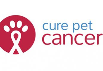 Cure Pet Cancer