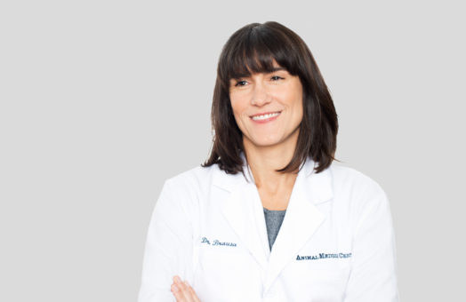 Dr. Heather Brausa of the Animal Medical Center in New York City