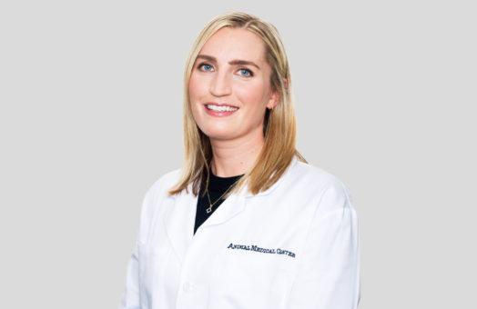 Dr. Ann Marie Zollo of the Animal Medical Center in New York City