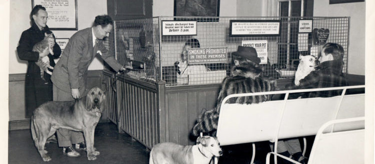 Pet owner checking in dog at reception desk