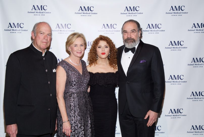 Attendees at AMC's 2018 Top Dog Gala