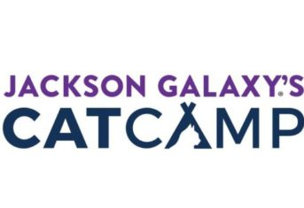 Jackson Galaxy's Cat Camp logo
