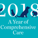 The cover image for the Year of Comprehensive Care report