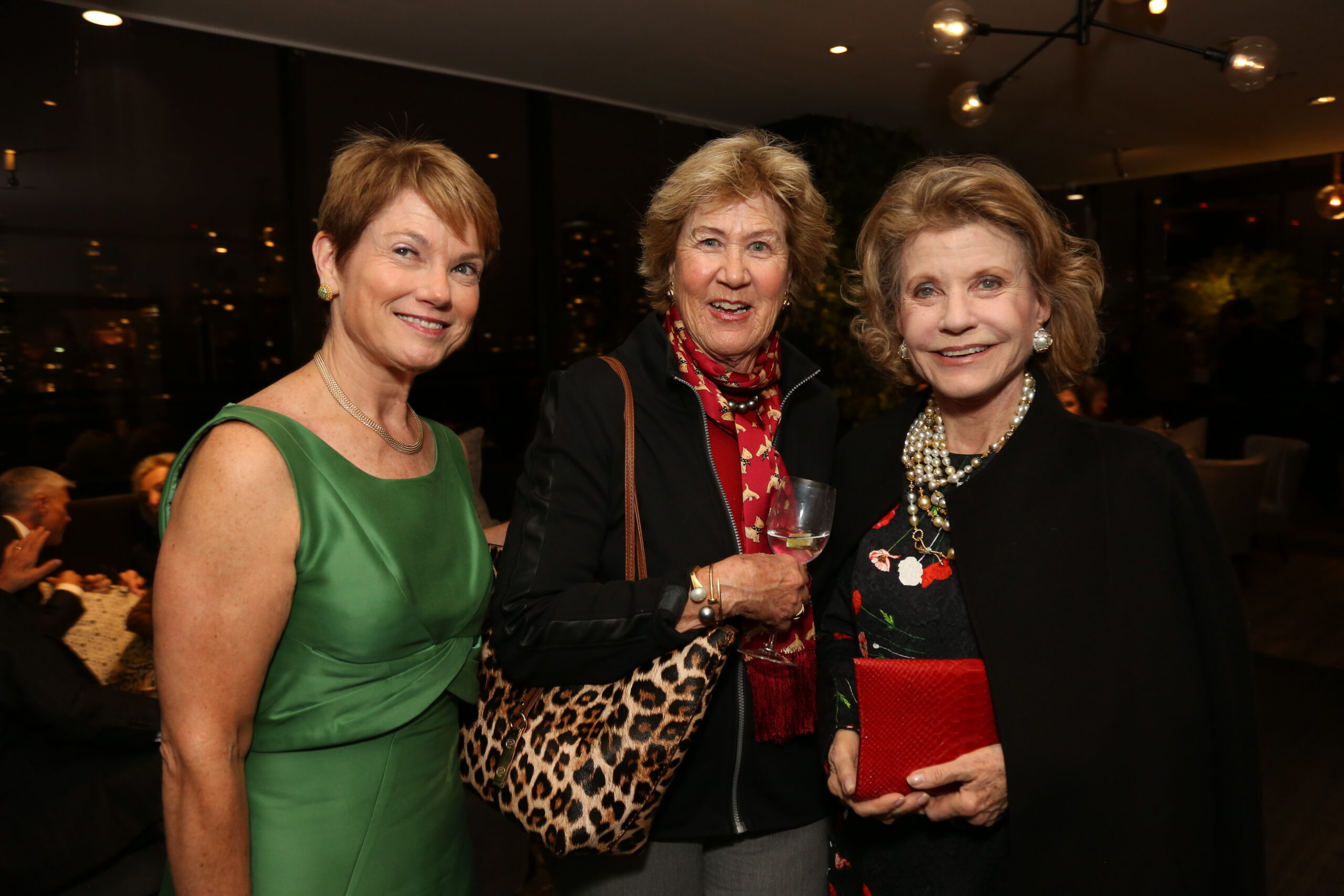 Attendees at AMC's Gift of Love capital campaign launch