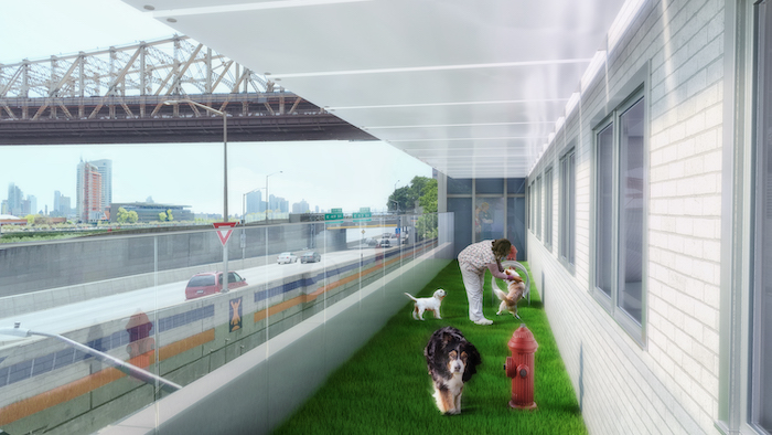 A rendering of the new dog run at the Animal Medical Center