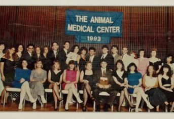 A class photo of the 1993 class of AMC residents and interns