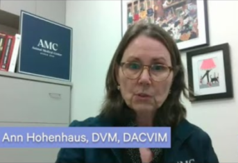 A screenshot of a video in which Dr. Ann Hohenhaus answers questions about COVID-19 and pets
