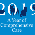 The Animal Medical Center's 2019 Year of Comprehensive Care Report Cover Image