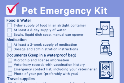A pet emergency kit checklist