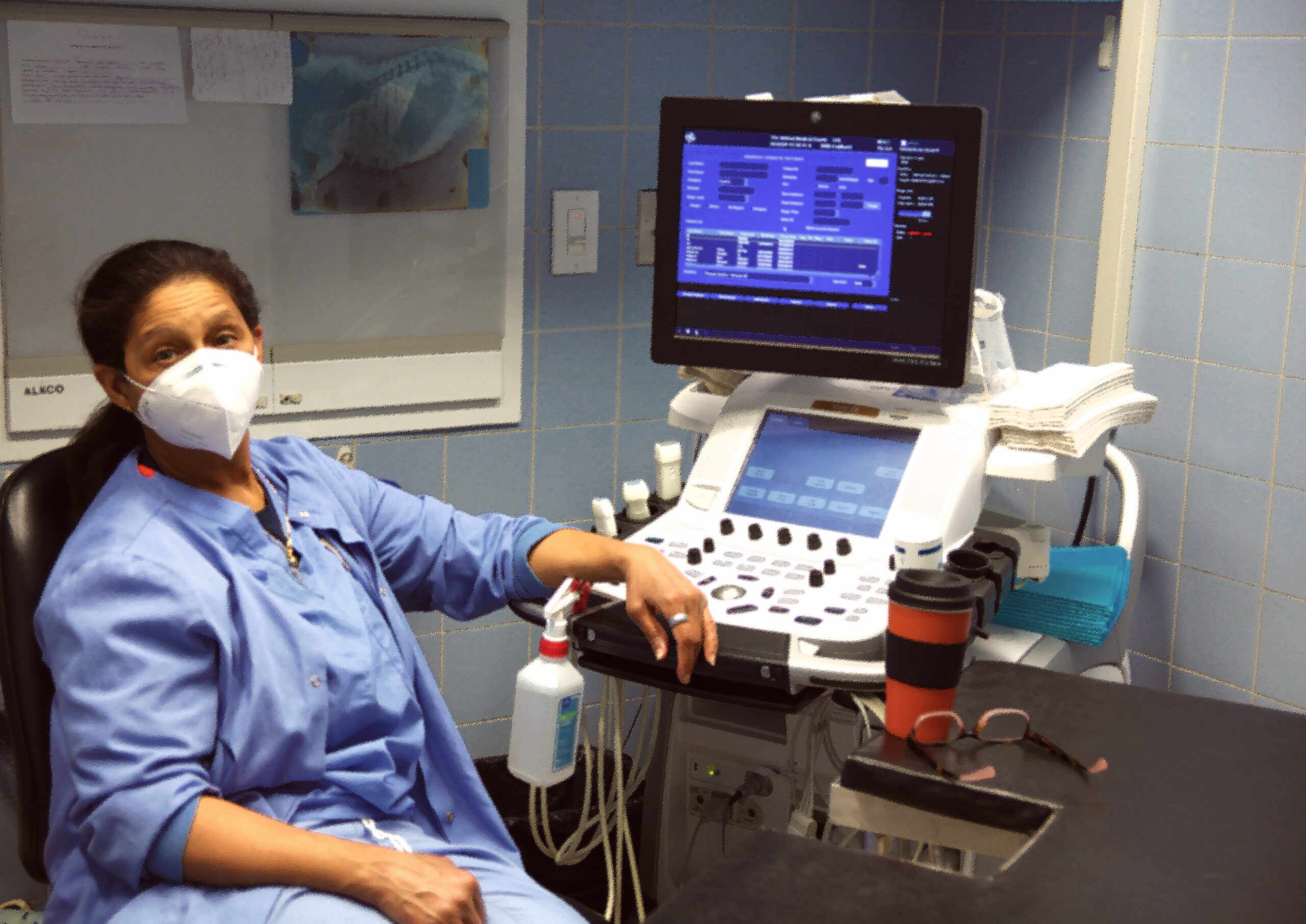 A masked veterinary professional sits at an echocardiogram machine