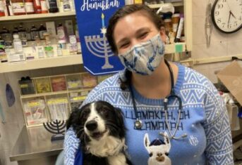 A veterinarian and a dog celebrate Hanukkah