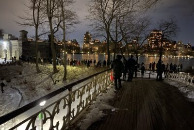 A crowd in Central Park to watch Barry the Barred Owl