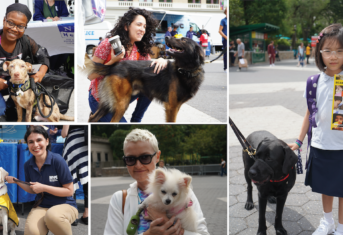 Collage of people and dogs and the Pet and Service Animals Fair